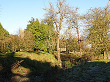 English_Bicknor_Castlesite